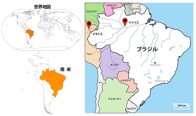 地図 アマゾン 川 アマゾン熱帯雨林